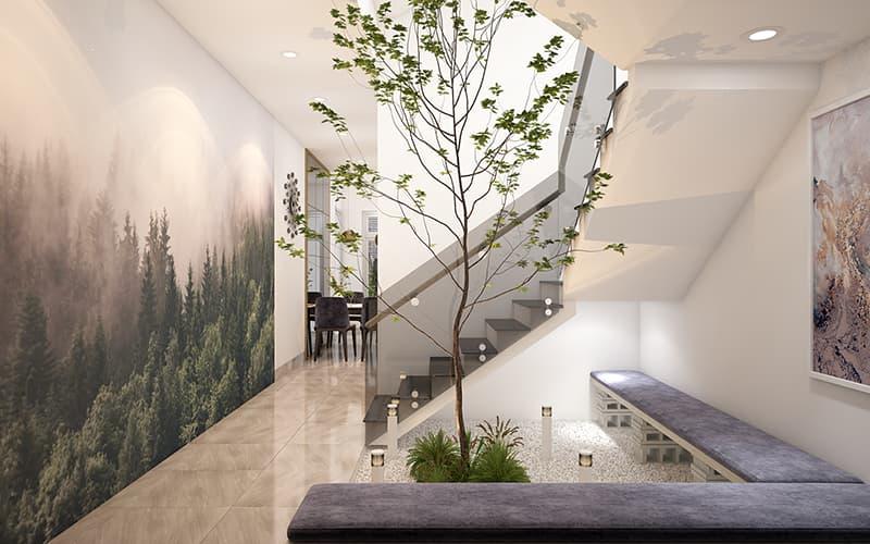 Trang trí không gian sống với cây xanh và ánh sáng thoáng mát