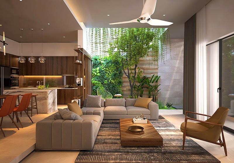 cây xanh trong nhà
