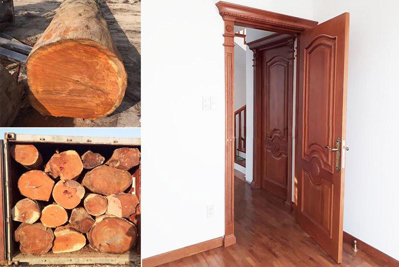 gỗ gõ đỏ nam phi